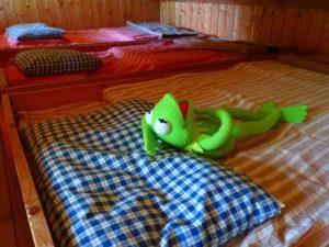 Kermit Tired