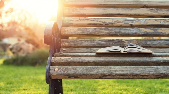 open book lying on a bench at sunset