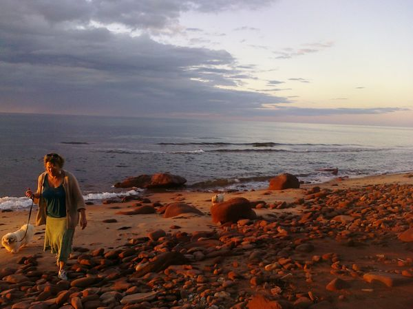 "Holly, walking her dogs on Prince Edward Island, where she has a summer house, and where her fourth novel, ""Chance Harbor"" (to be released in October, 2015) is set."