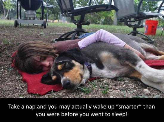 Girl and Dog Nap 3