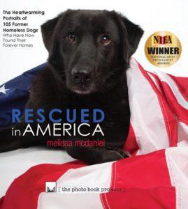 Rescued in America