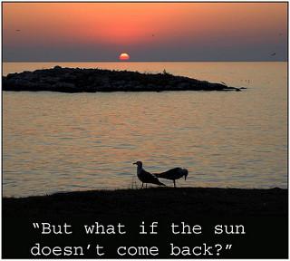 Worry Sun Seagulls