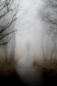 Daydream Fog