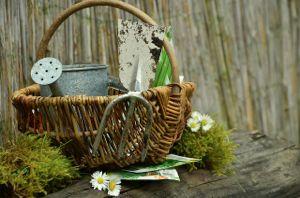Write Gardening 2