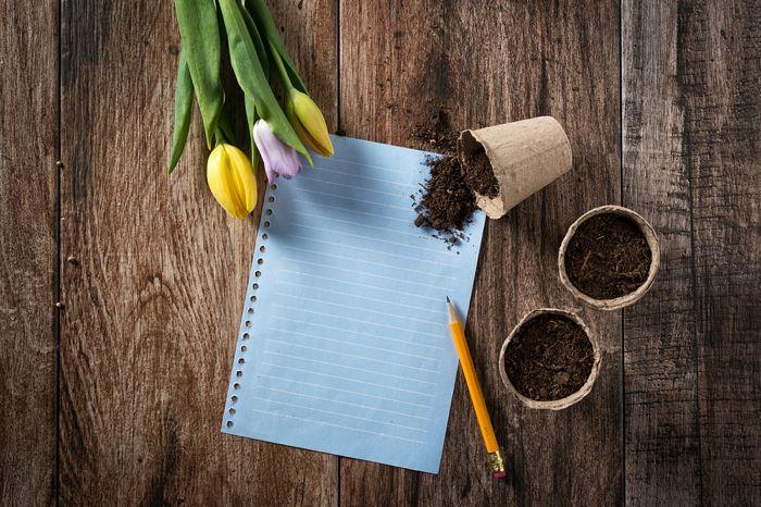Writing Seed 2