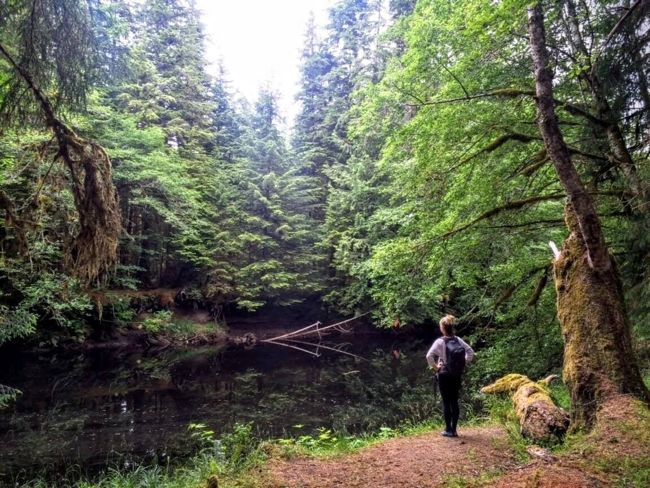 Wilderness therapy on a hike in Haida Gwaii (which happened to be a writing retreat!).