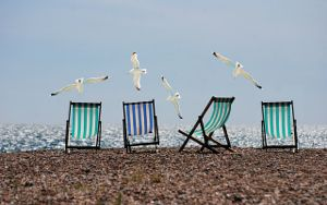 Beach chairs seagulls 2