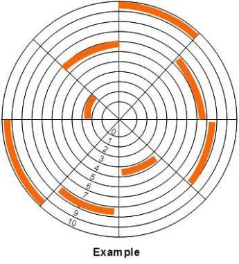 Wheel of life example 2