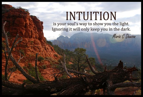 Intuition Nature Quote 2