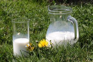 Milk pitcher grass 2