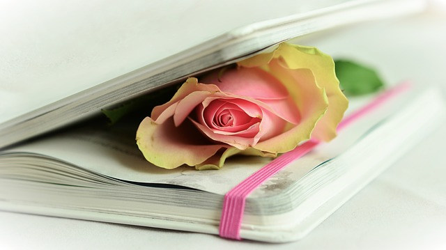 Rose Book Poetry