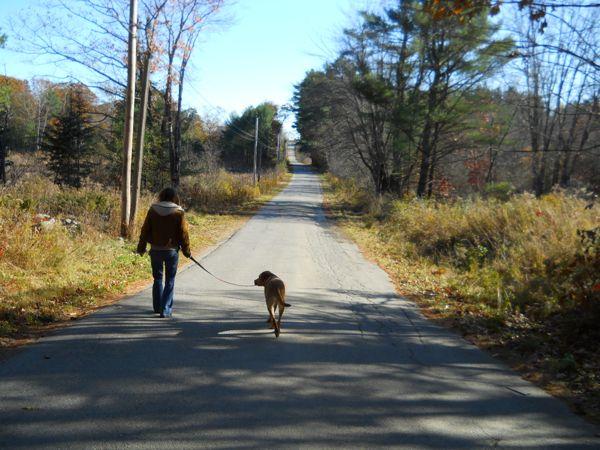 walking-dog-2
