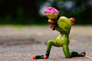 Frog Flowers Beg 2