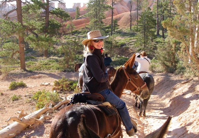 Mule ride in Bryce National Park.