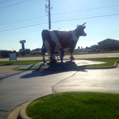 This cow is a landmark in my hometown of Janesville, Wisconsin.