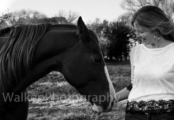 Abbie Horse BW