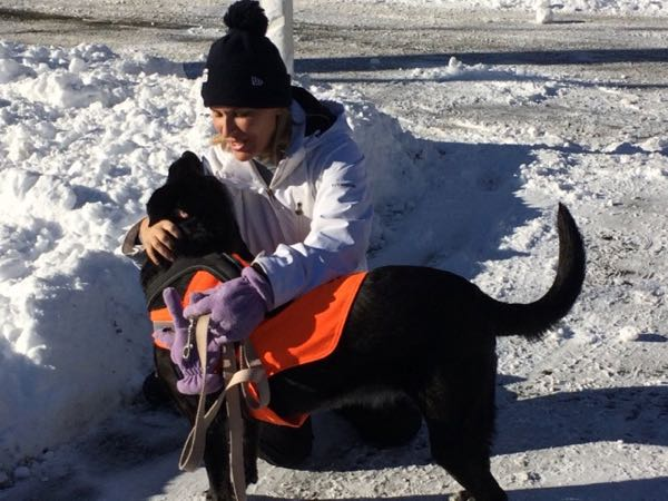 Even when I'm down, Gabby the dog loves winter!