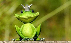 frog-king